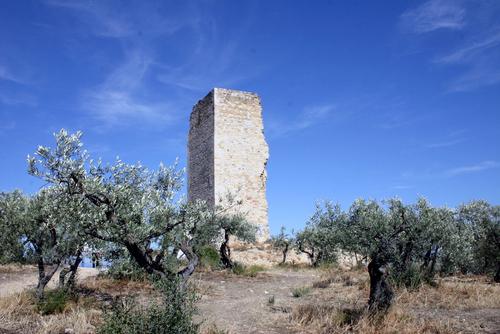 La tour du Mont d'Or vue depuis notre école