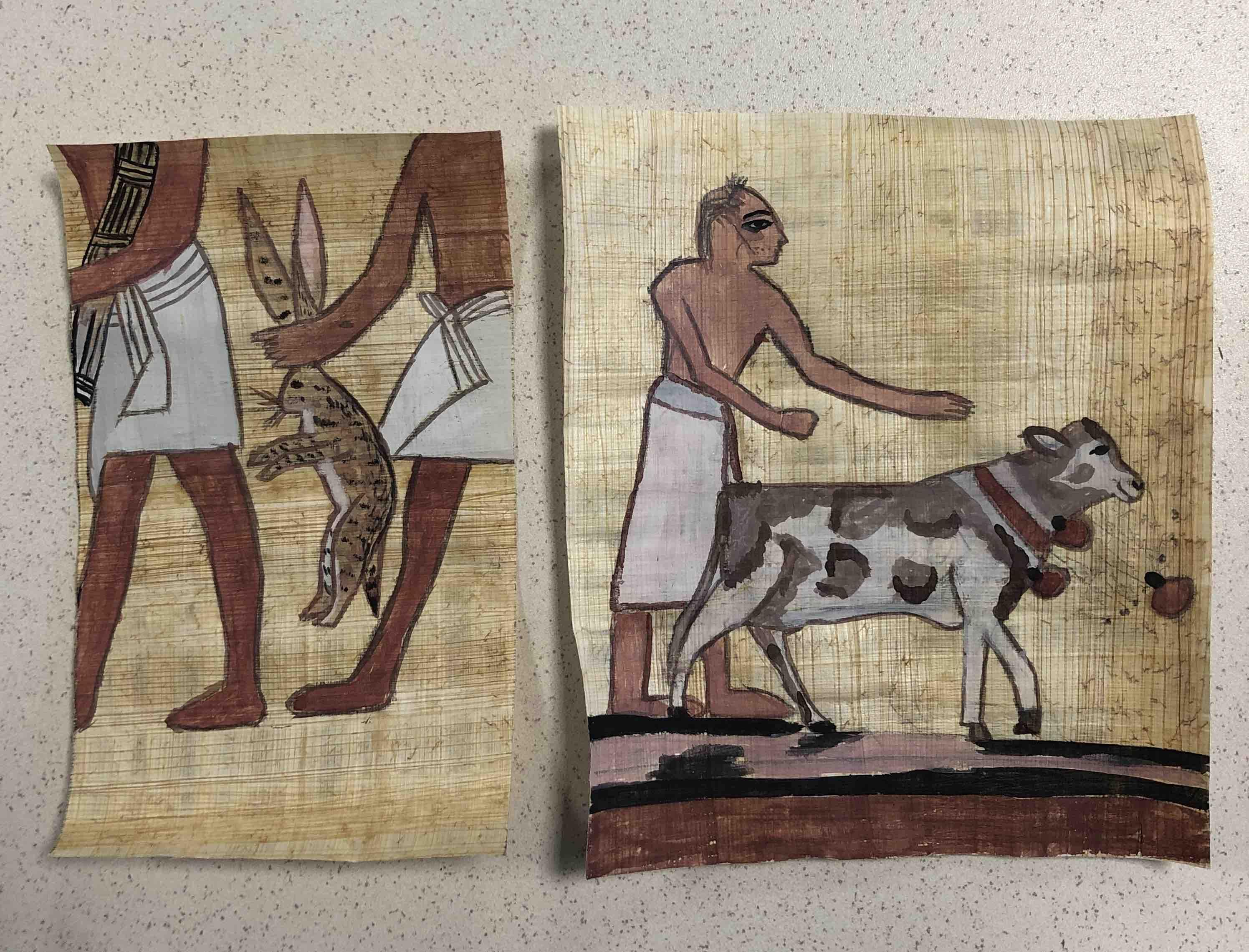 Reproduction sur papyrus